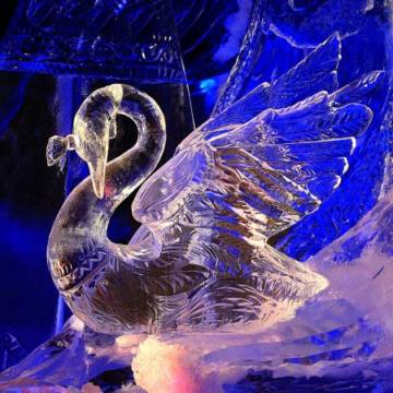 фото царевна-лебедь