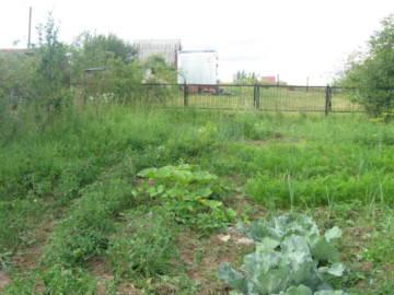 Покупка земли в собственность фото