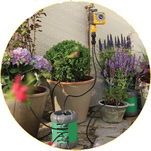 Устройство полива комнатных растений