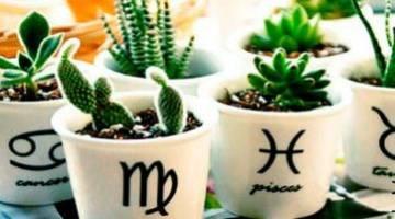 растения по знакам зодиака