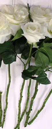 Что добавить в воду чтобы розы дольше стояли
