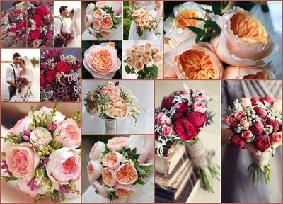 Английские розы 2