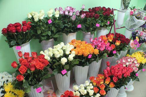 Розы хранят в холодильниках