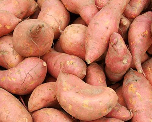Азиатский сладкий картофель батат